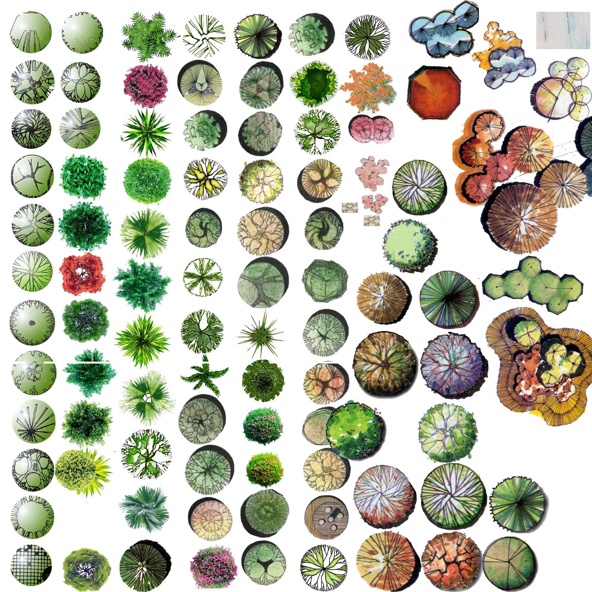 图纸 园林设计图  常用平面图例   彩平图例,分享在此.