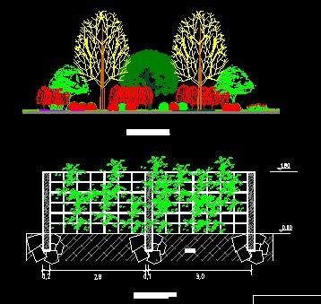 植物配置立面图