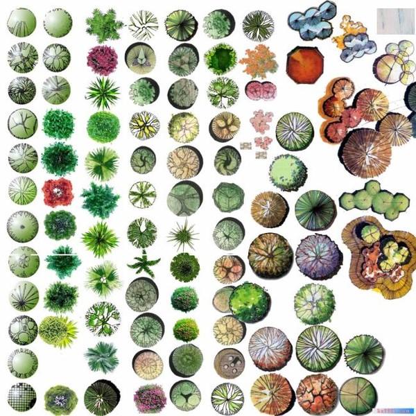 小区平面图ps 假山ps平面图 ps假山平面图  所属分类:植物素材 cad