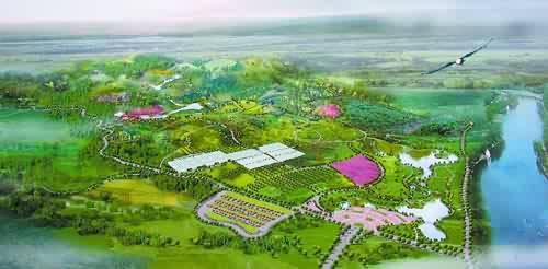 图纸 园林设计图  景观设计             地方            相关专题