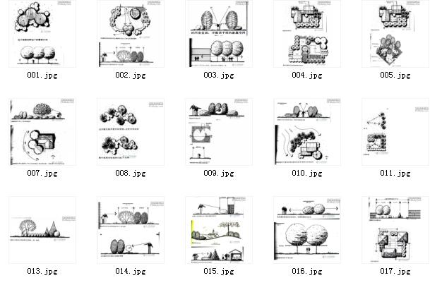 景观植物配置图例