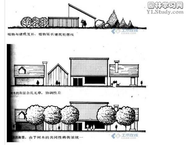 配置图家庭影院配置图景观植物配置屋顶花园植物配置植物配置立面图