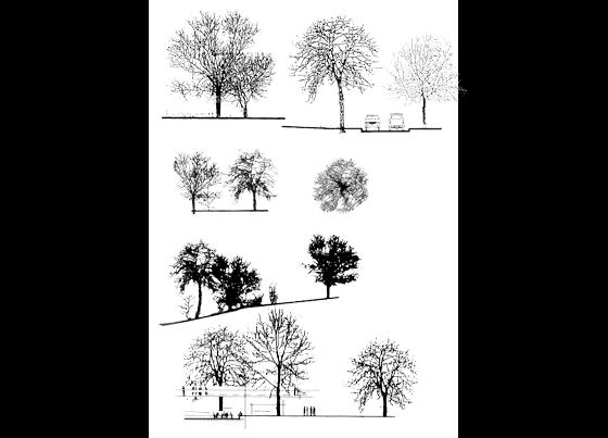 ps格式立面树配景_CO土木在线(原网易土木在
