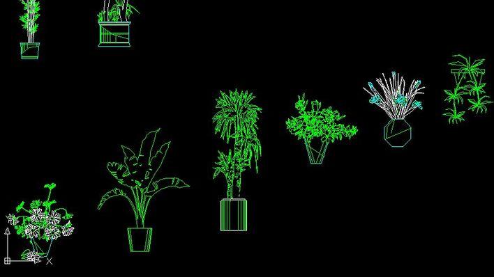 立面植物cad