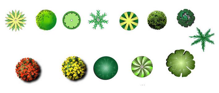 谢谢 相关专题:彩色观叶植物彩色平面图别墅彩色平面图cad彩色平面图