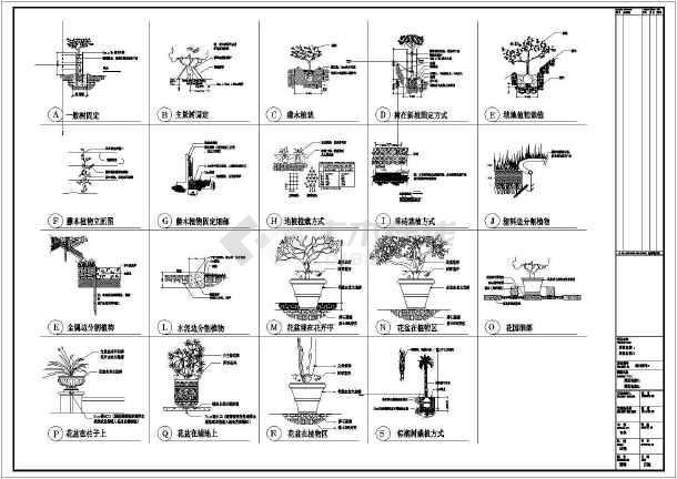 园林植物种植施工图