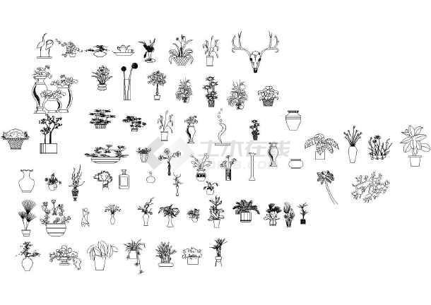 cad植物花卉立面图块简介:   cad植物花卉立面图块包含乔木立面,乔木
