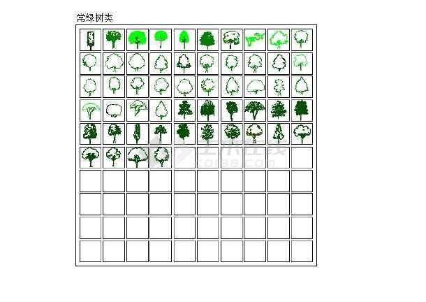 常见景观树木的平面图,立面图cad版图片2