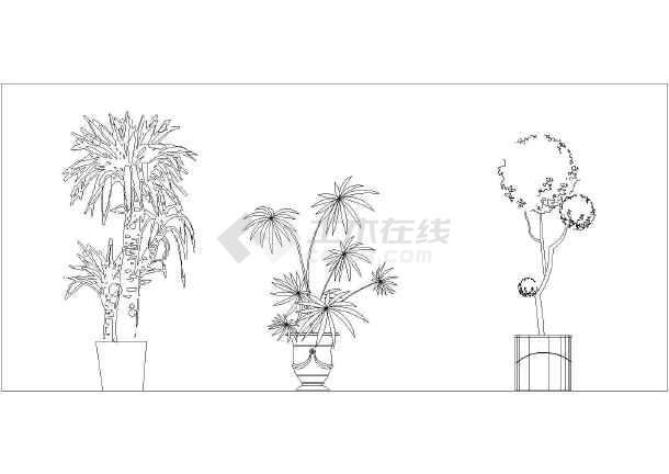 园林绿化设计植物素材(平面,立面)