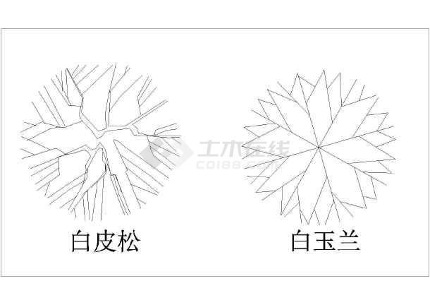 为绘图中常用的植物设计图例,有二三百种,内容比较全面,常用的乔木