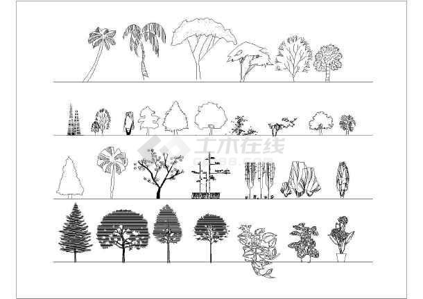 园林植物景观素材图例cad设计图(各种树木植物)图片1