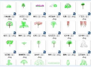 园林景观cad设计图块花草cad图块视频树cad图cad教程单个画图图片