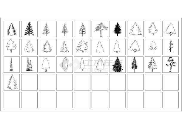 400种植物立面,平面图例大全(多年精心收集)