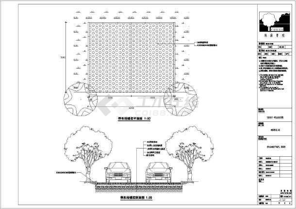 宁波天一职业技术学院硬质景观人行道,停车场铺装施工图片