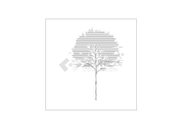 景观工程乔木灌木等树形立面图例汇总