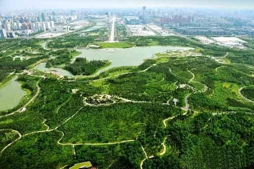 北京景全参与上海奥林匹克森林公园v系统系统设才毕业去设计院还是房地产图片