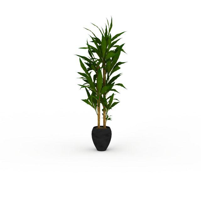 翠绿长叶子盆景3d模型下载