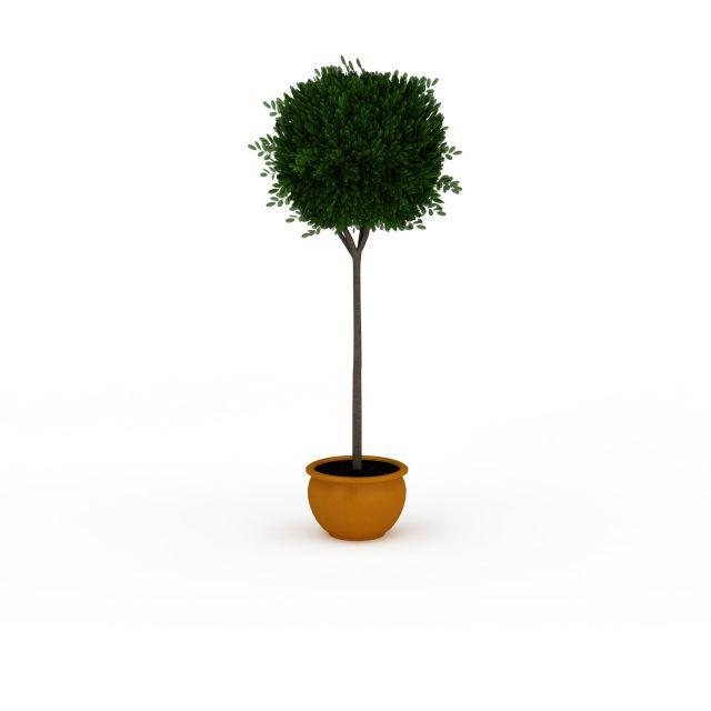 圆形树冠盆景3d模型下载