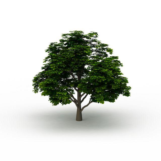 公园小树3d模型下载图片