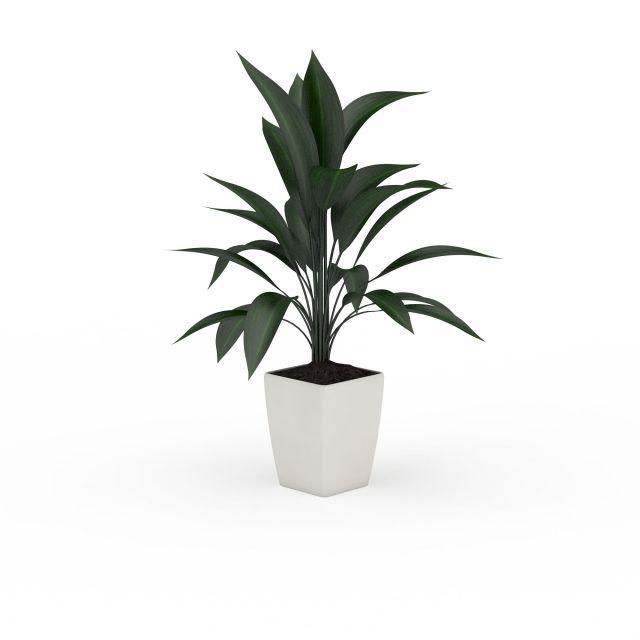 大叶子绿植盆栽3d模型下载