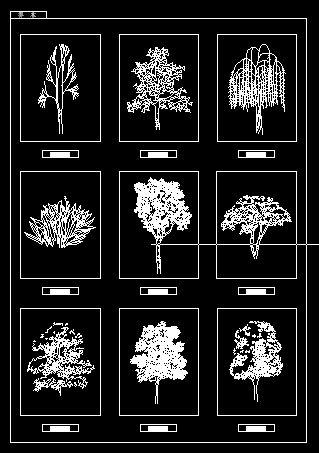 cad图块植物立面图块4
