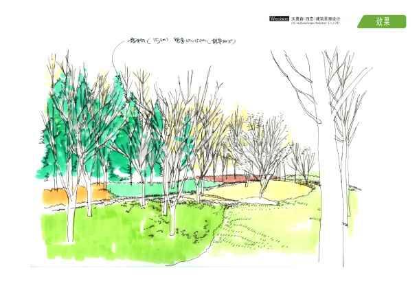 城市道路绿地设计手绘