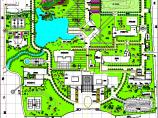 某医院绿化cad施工图图片1
