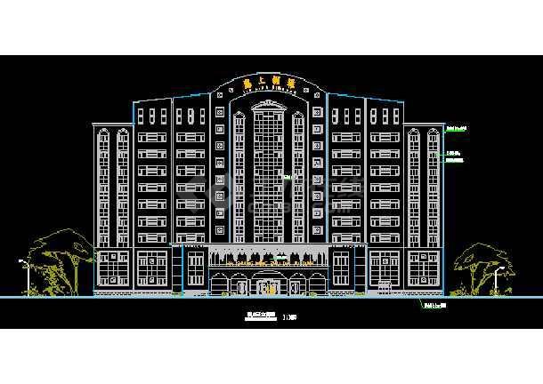 某大酒店设计施工建筑CAD平立面图(总图)-图2