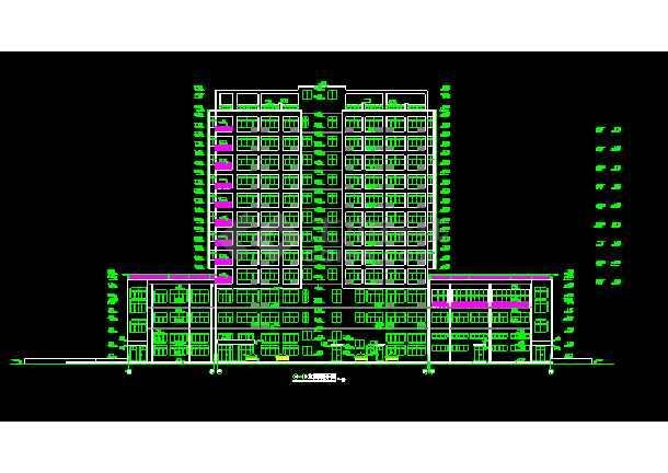 某市娱乐城大厦CAD建筑设计施工平立剖图纸-图2