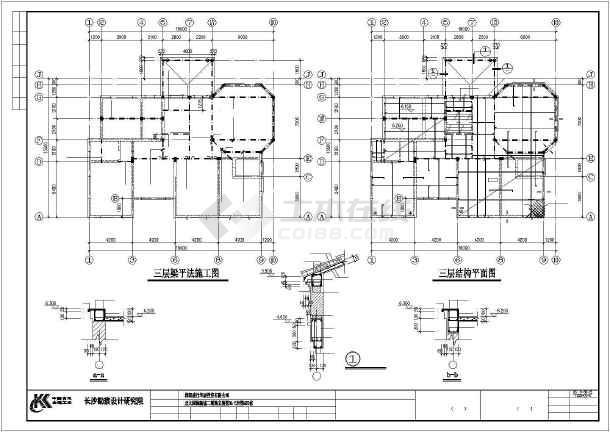 独特风格别墅建筑结构图纸-图3