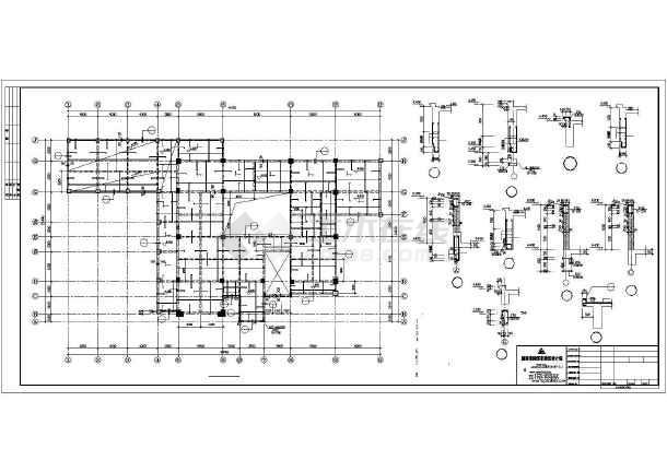 某地大型豪华别墅建筑图纸-图2
