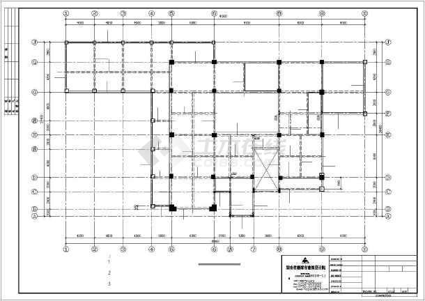 某地大型豪华别墅建筑图纸-图3