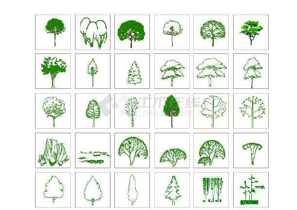 点击查看园林景观各种湿地植物图例(共二百零五个)第1张大图
