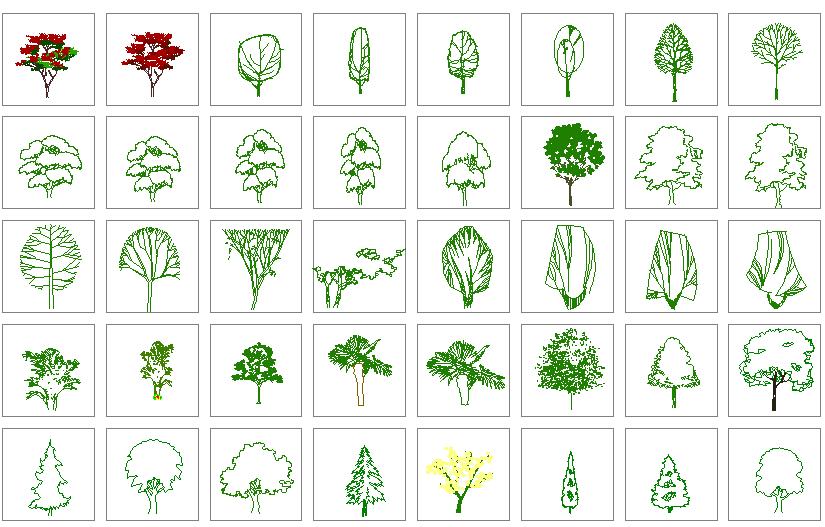 园林景观各种湿地植物图例(共二百零五个)图片2