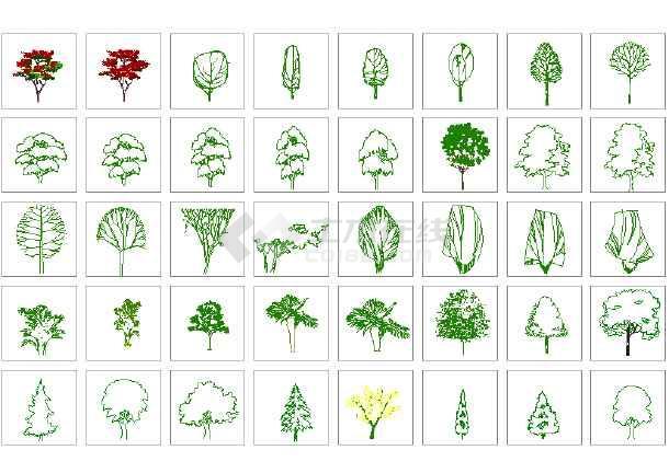 点击查看园林景观各种湿地植物图例(共二百零五个)第2张大图
