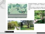 [北京]小区外围绿化带景观设计方案(含实景照片)图片1