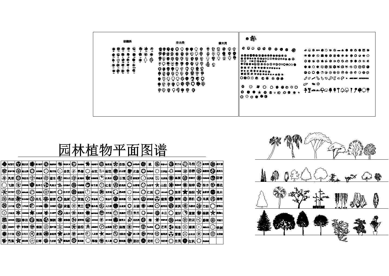 CAD园林植物图块(平面、立面)图片1