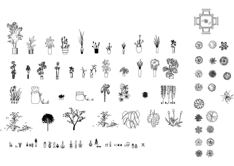 很好的立面植物图块图片1