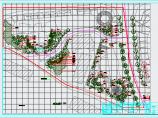 中建龙城园林景观植物配置施工图纸图片2